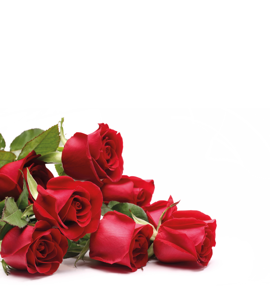 life is not bed of roses It is important that they realize a mistake need not ruin their future, but they must also know that not everything in life is a bed of roses maureen forrester life , future , mistake , alcohol , people.